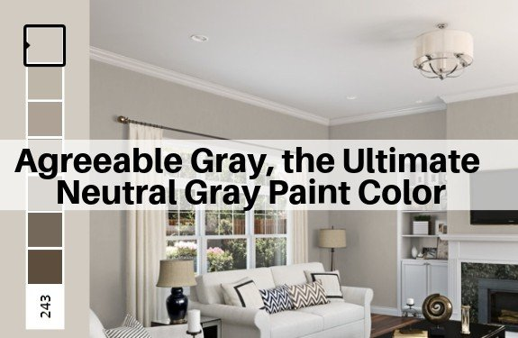 Neutral Greige Paint Color