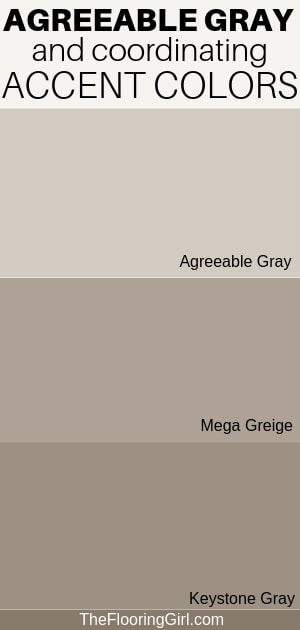 Accent colors for agreeable gray from Sherwin Williams