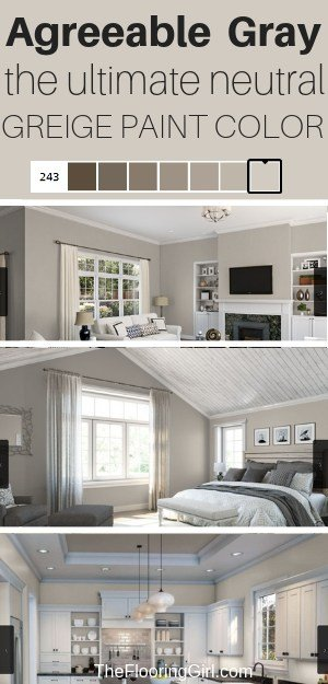 Agreeable Gray The Ultimate Neutral Greige Paint Color The Flooring Girl,Natural Mosquito Repellent Plants Indoor