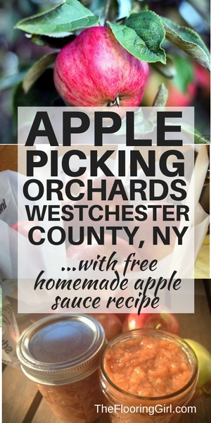 Apple Orchards in Westchester County wth apple picking