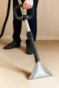 best carpet steam cleaner for 2020