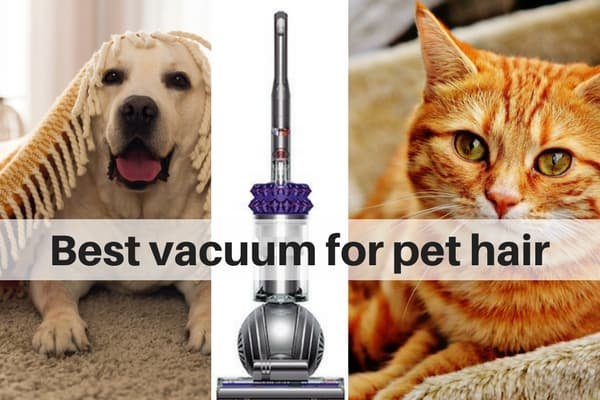 Best Vacuum Cleaner for pet hair on carpets