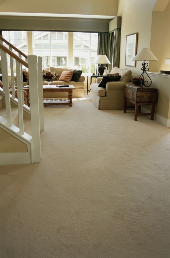 what types of carpet are in style