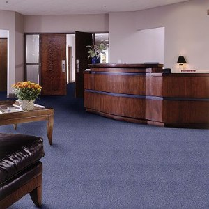 Commercial carpet Westchester NY good for basements