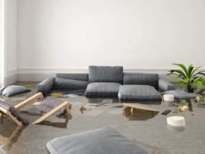 save hardwood floors from water damage or a flood