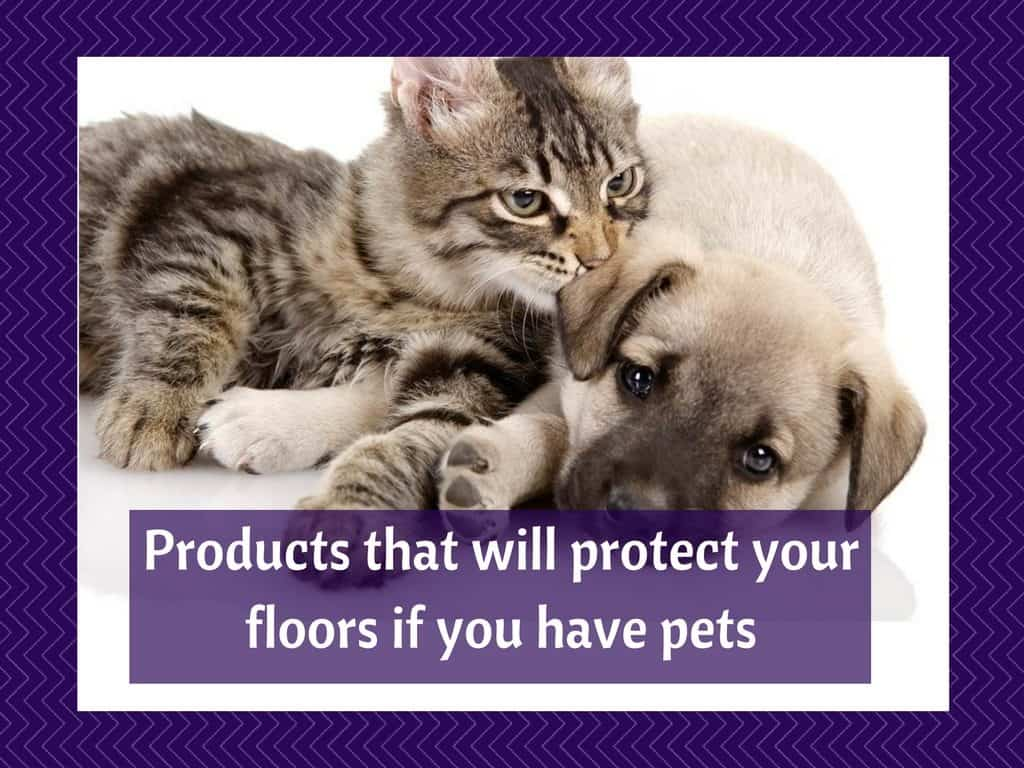 Products to protect your flooring if you have pets