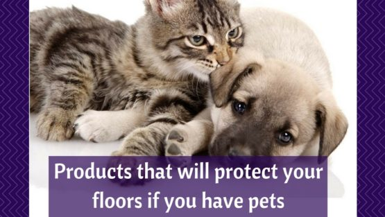 Helpful items if you have pets and want to protect your floors