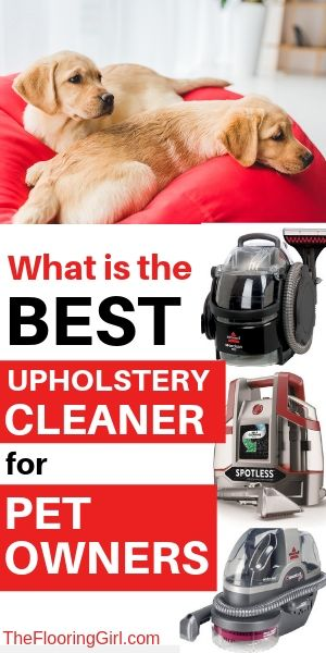 top rated upholstery cleaners if you have pets