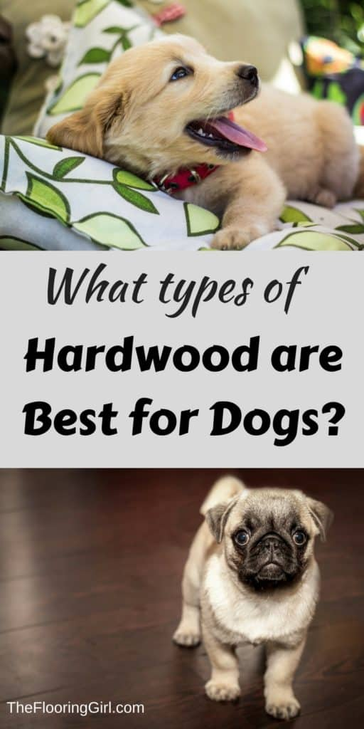 What types of hardwood are best for dogs. Which hold up the best?