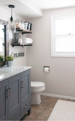 SW Agreeable Gary in bathroom with navy cabinets