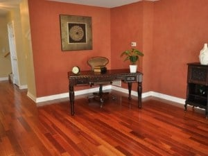 westchester brazilian cherry hardwood species in westchester