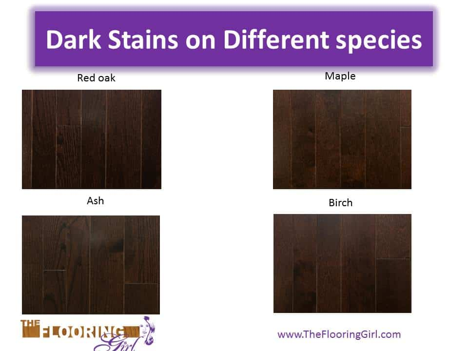dark stains on different wood species