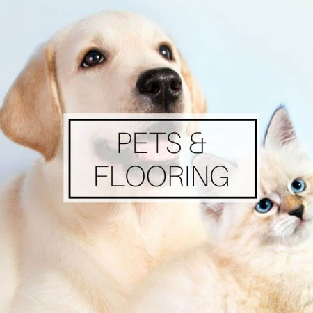Pets and flooring