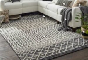 trendy gray and white area rug on gray floors