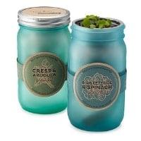 plant mason jar gift
